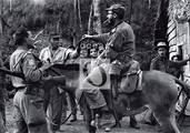 El Comandante Fidel Castro, en uno de sus recorridos habituales por el territorio montañoso.