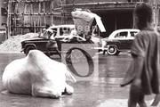 """""""...país de contrastes..."""". India, 1959"""
